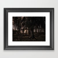 Glow in the Woods Framed Art Print