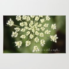 queen lace flowering head. floral garden plant photography. Rug