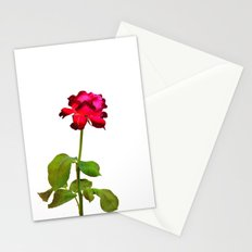 Magenta Red Rose Stationery Cards