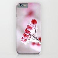 Red Berries Quadro iPhone 6 Slim Case