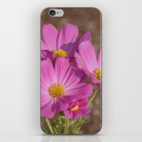 Cosmos In The Garden iPhone & iPod Skin