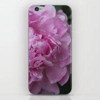 Pink Peony II iPhone & iPod Skin