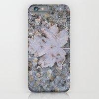 Freezed iPhone 6 Slim Case