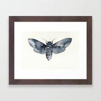 MOTH. Framed Art Print