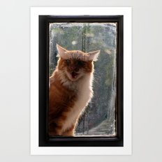 Ginger Cat waiting by the window (CW003) miaouuuuuu Art Print