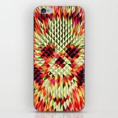 Geo Skull iPhone & iPod Skin
