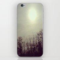 Autumn Calm iPhone & iPod Skin