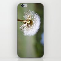 Don't Blow Away iPhone & iPod Skin