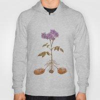 Anatomy of a Potato Plant Hoody