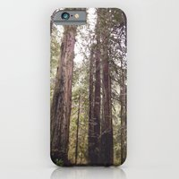 iPhone Cases featuring REDWOOD BEAUTY by Tara Yarte