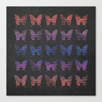 Butterfly Exhibition  Canvas Print