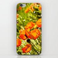 Poppy Field iPhone & iPod Skin