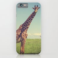 iPhone Cases featuring Mr. Giraffe by Leah M. Gunther Photography & Design