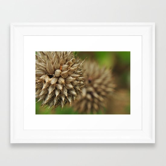 waiting for winter Framed Art Print