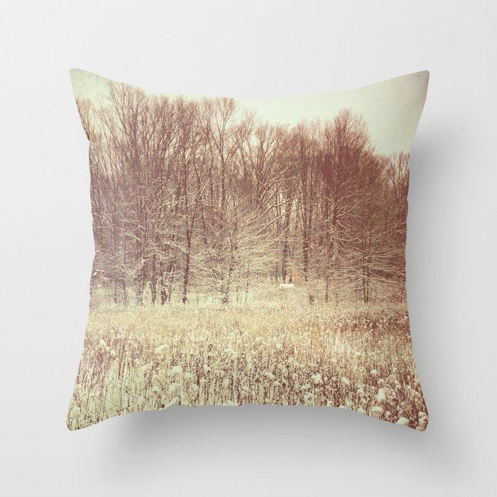 Jade Throw Pillows : Winter White Throw Pillow by Olivia Joy StClaire Society6