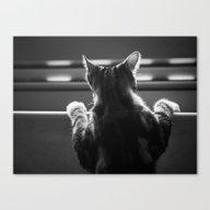 Cat II Canvas Print