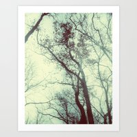 November Day Art Print