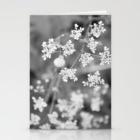 Queen Anne's Lace Wildfl… Stationery Cards