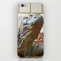 Komodo Dragon iPhone & iPod Skin