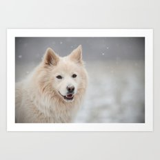 snowflakes are my friends - says the white dog Art Print