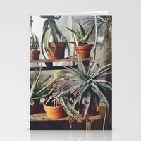 Cactus Wall Stationery Cards