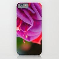 Dark Eyes Fuschia iPhone 6 Slim Case