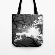 Special Light In Autumn  Tote Bag