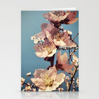 Fulgor Stationery Cards