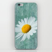Daisy Head iPhone & iPod Skin