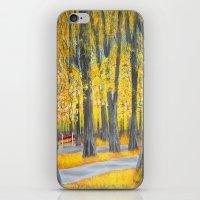 Golden park iPhone & iPod Skin