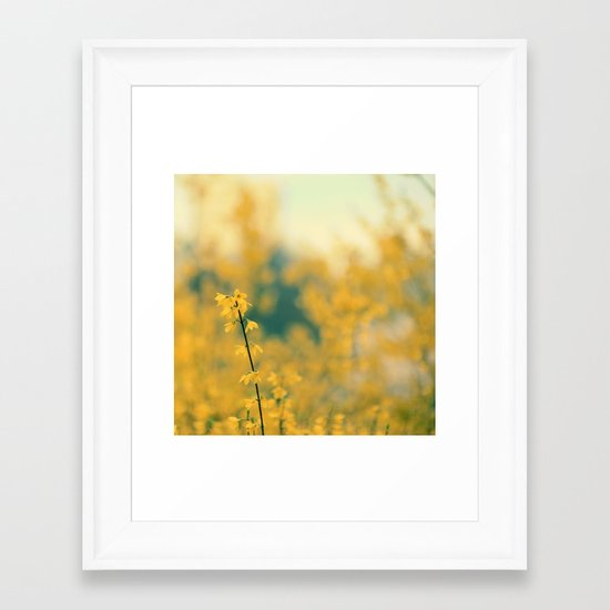 Forsythia Framed Art Print