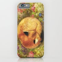 iPhone & iPod Case featuring The Cozy Fox by Aimee Stewart