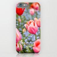 Keukenhof Tulips - Amsterdam iPhone 6 Slim Case