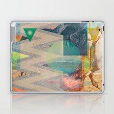 DIPSIE SERIES 001 / 01 Laptop & iPad Skin