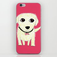 Bichon Bolognese Dog iPhone & iPod Skin