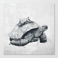 Tortoise Tree - Fall Canvas Print