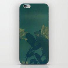 Blue Roses Polaroid iPhone & iPod Skin
