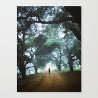 There goes Alice Canvas Print