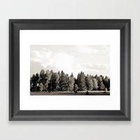 Trees in a line Framed Art Print