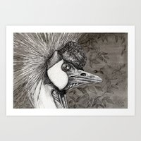 Grey Crowned Crane G023 Art Print
