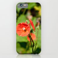 Last of the Summer Flowers iPhone 6 Slim Case