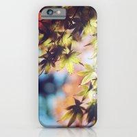 Autumn Beauty iPhone 6 Slim Case