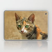 FELINE FINE Laptop & iPad Skin