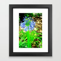 PurpleFlowers2 Framed Art Print