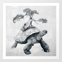 Tortoise Tree - Growth Art Print