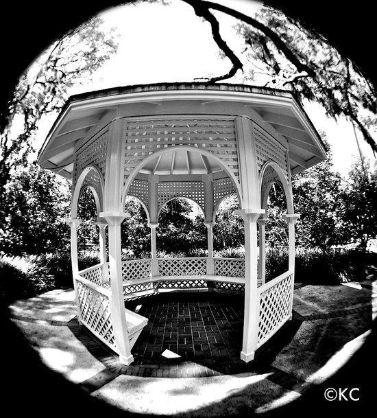 Gazebo Black and White Art Print