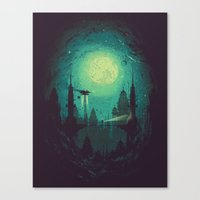 3012 Canvas Print
