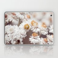 Pearly Everlasting Laptop & iPad Skin