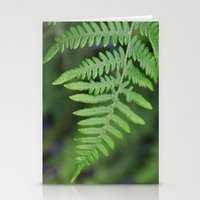 green fern leaves. floral nature wild plant photography. Stationery Cards
