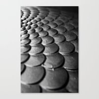 Scale Away Canvas Print